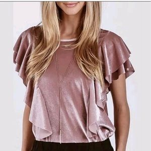 Anthropologie On the Road Pink Velvet Top Blouse